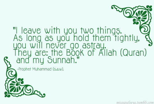 hold to quran and sunnah